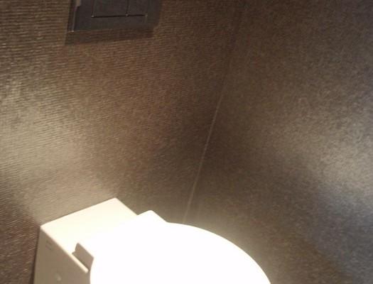 Behang Voor Toilet : Manieren om je toilet een restyling te geven biano